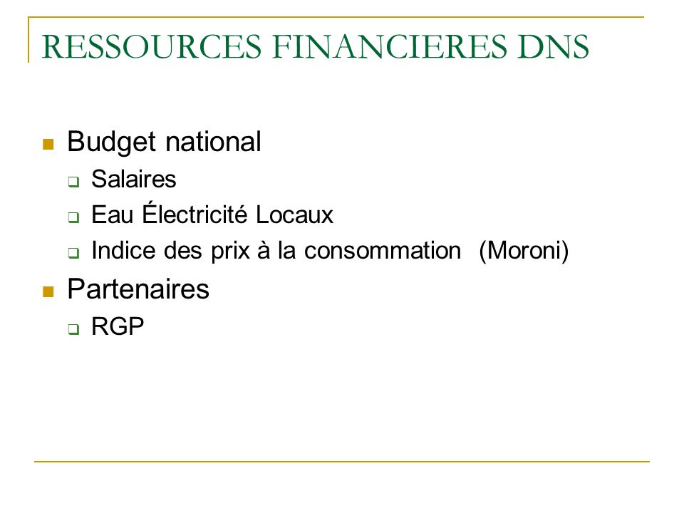 RESSOURCES FINANCIERES DNS Budget national Salaires Eau Électricité Locaux Indice des prix à la consommation (Moroni) Partenaires RGP