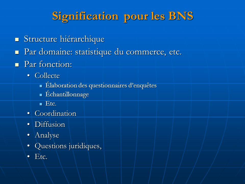 Signification pour les BNS Structure hiérarchique Structure hiérarchique Par domaine: statistique du commerce, etc. Par domaine: statistique du commer