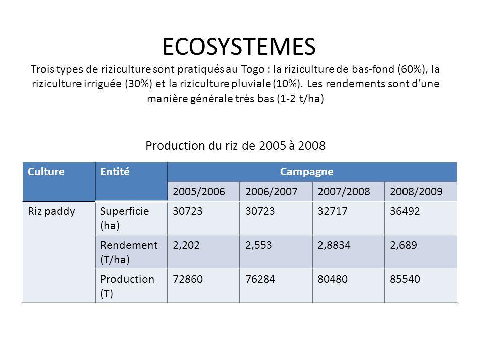 ECOSYSTEMES Trois types de riziculture sont pratiqués au Togo : la riziculture de bas-fond (60%), la riziculture irriguée (30%) et la riziculture pluviale (10%).