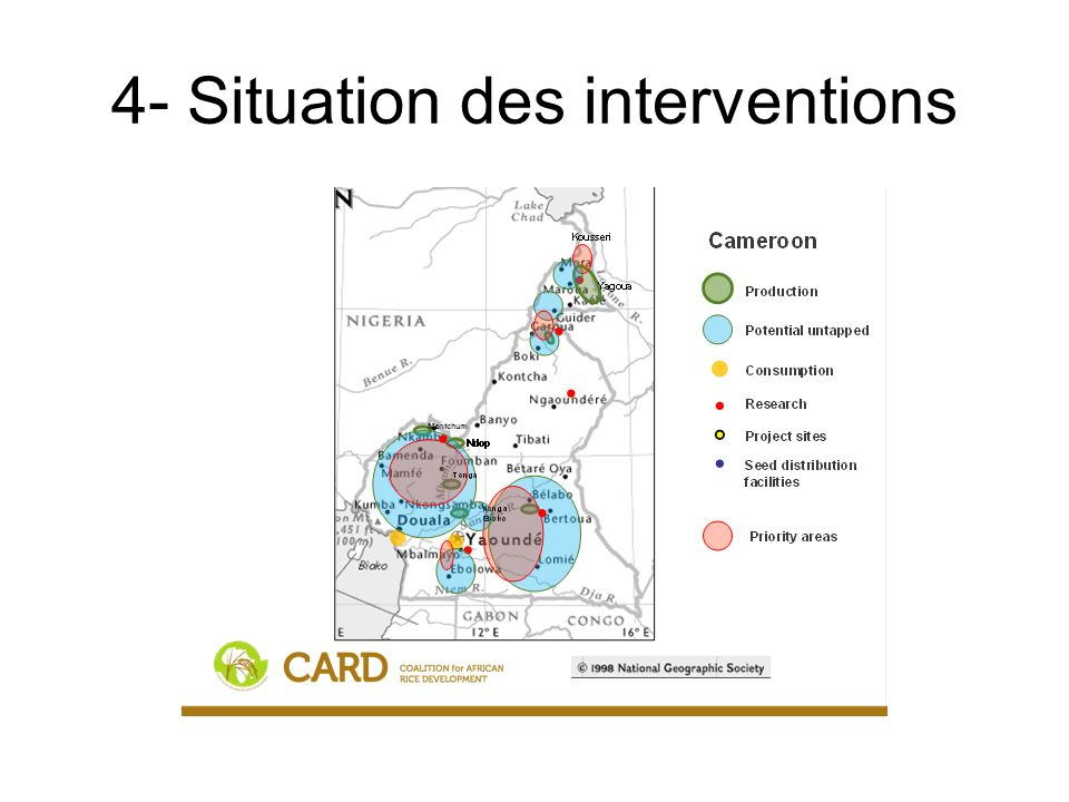 Situation des interventions (suite) CAMEROUNPolicy / institutionalInfrastructureHuman resource capacity Provision / supportInformation / knowledgeUnclassified Seed CM12-5; CM14-1b,cCM14-1a;CM2-2,4; CM12-5; CM14-1d CM1-1; CM2-1; CM3- 3,4; CM4-2 CM1-1; CM2-1; CM7-1; CM14-1b,c Fertilizer CM3-4; CM4-2 Irrigation / water management CM11-4CM3-1; CM5-1; CM6-1,2; CM11-1; CM7-1; CM12-1,2 CM11-2CM12-1; CM13-1CM11-3; CM7-1 On-farm technology dissemination CM12-3,4; CM15-2CM1-3CM1-1; CM12-4; CM13- 2 CM1-1; CM15-1 Mechanization CM16-1CM16-1,2CM3-4; CM12-1; CM13- 1 CM16-1,2 Quality improvement CM1-2; CM4-3; CM7-2; CM13-3 CM1-3; CM2-5CM1-2 Access to market CM7-2CM5-1,2; CM13-4; CM14-3CM1-3; CM2-3,5CM4-3; CM13-4CM7-2CM4-3 Access to credit CM7-2; CM4-2; CM4-3 Overall policy tools CM3-3; CM5-3; CM6-1,2; CM7-1; CM7-2; CM8; CM9; CM10; CM12-6; CM14-2 CM14-3 CM8; CM9; CM10 Unclassified CM3-2;CM11-2; CM4-1; CM5-3 Out CM7-3; CM4-4; CM4-2; CM5-4; CM14-4