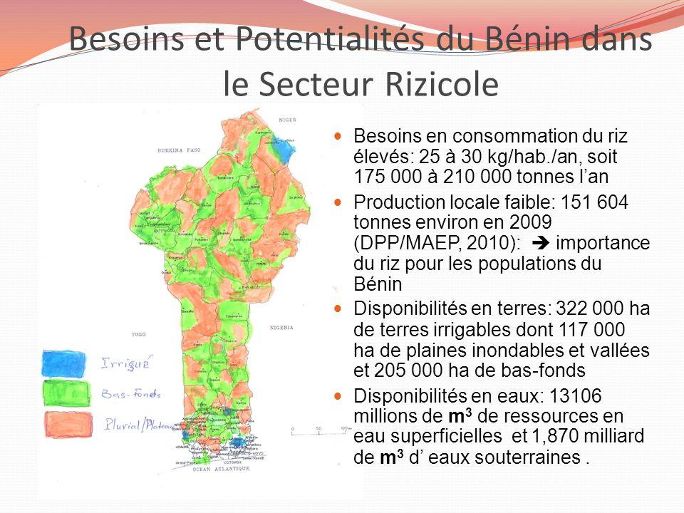 Besoins et Potentialités du Bénin dans le Secteur Rizicole Collines Atacora Donga Zou Besoins en consommation du riz élevés: 25 à 30 kg/hab./an, soit