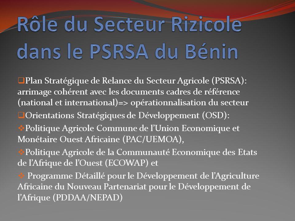 Plan Stratégique de Relance du Secteur Agricole (PSRSA): arrimage cohérent avec les documents cadres de référence (national et international)=> opérat