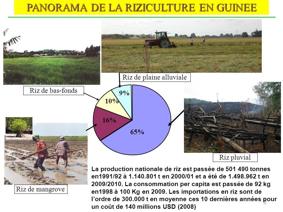 3 3 3 PANORAMA DE LA RIZICULTURE EN GUINEE Riz de mangrove Riz de bas-fonds Riz de plaine alluviale 65% 9% 10% 16% Riz pluvial La production nationale
