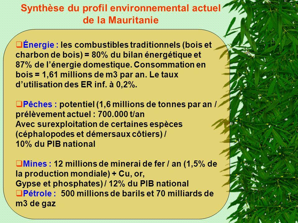 Synthèse du profil environnemental actuel de la Mauritanie Énergie : les combustibles traditionnels (bois et charbon de bois) = 80% du bilan énergétique et 87% de lénergie domestique.