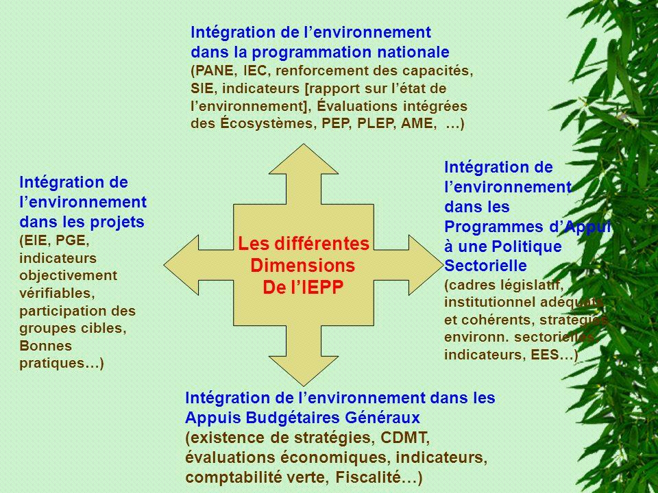 Les différentes Dimensions De lIEPP Intégration de lenvironnement dans la programmation nationale (PANE, IEC, renforcement des capacités, SIE, indicateurs [rapport sur létat de lenvironnement], Évaluations intégrées des Écosystèmes, PEP, PLEP, AME, …) Intégration de lenvironnement dans les Programmes dAppui à une Politique Sectorielle (cadres législatif, institutionnel adéquats et cohérents, stratégies environn.