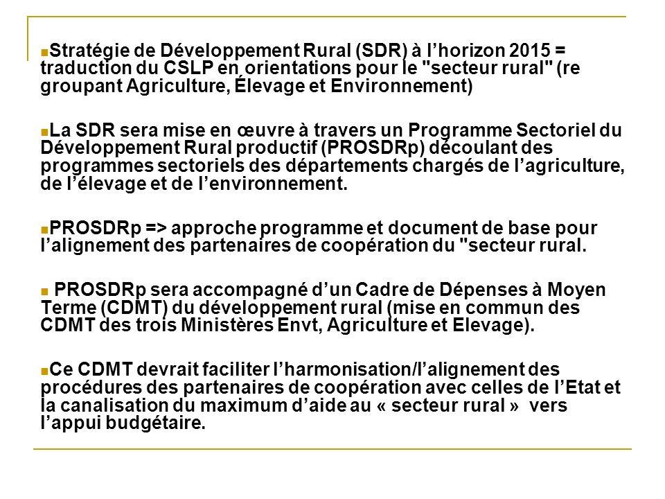 Stratégie de Développement Rural (SDR) à lhorizon 2015 = traduction du CSLP en orientations pour le secteur rural (re groupant Agriculture, Élevage et Environnement) La SDR sera mise en œuvre à travers un Programme Sectoriel du Développement Rural productif (PROSDRp) découlant des programmes sectoriels des départements chargés de lagriculture, de lélevage et de lenvironnement.