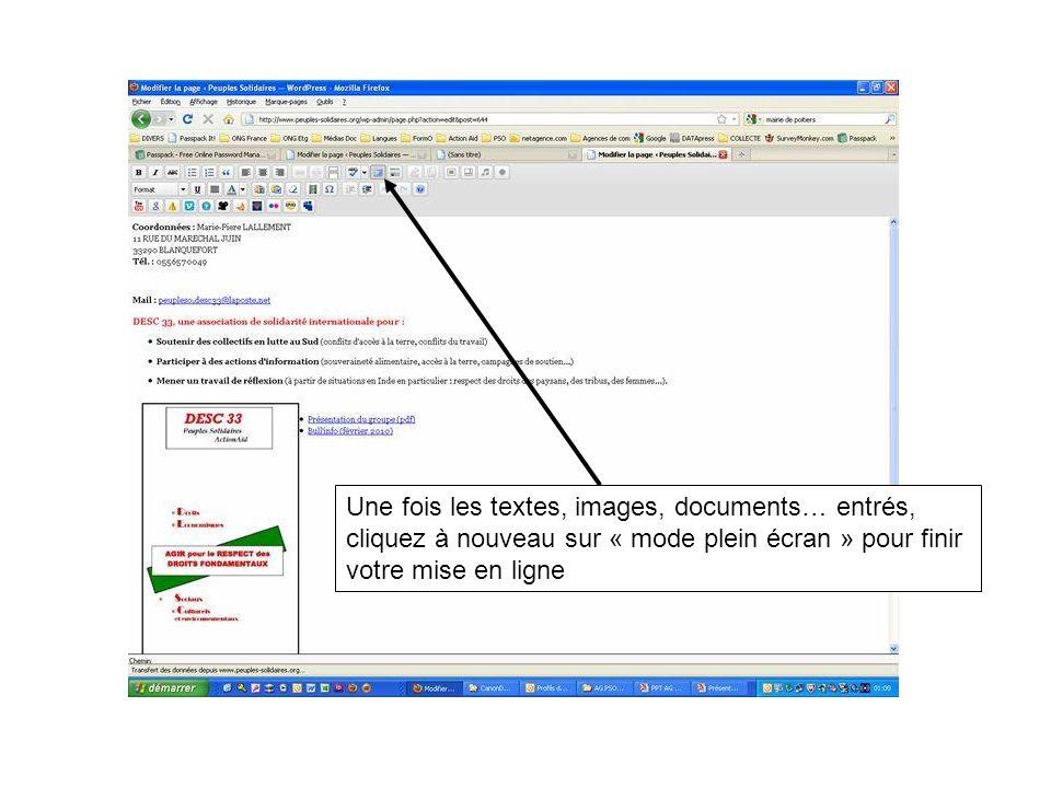 Une fois les textes, images, documents… entrés, cliquez à nouveau sur « mode plein écran » pour finir votre mise en ligne
