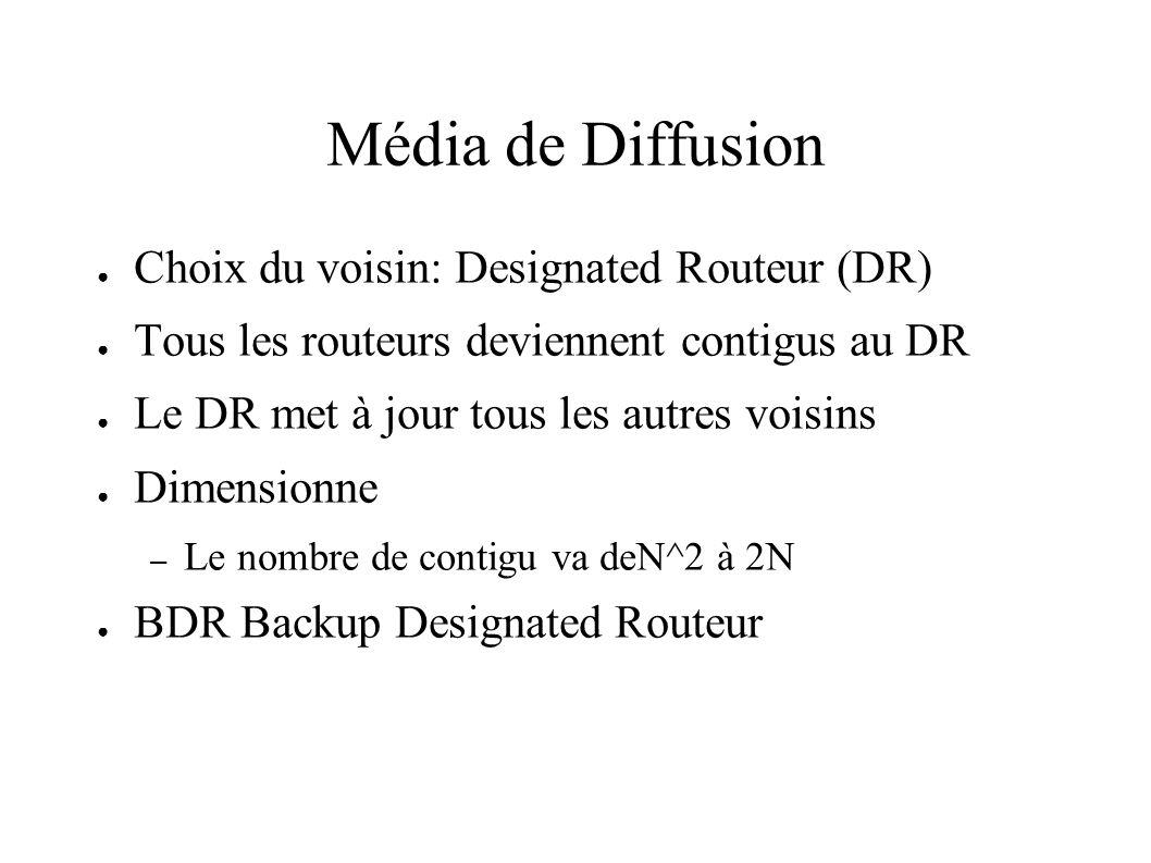 Média de Diffusion Choix du voisin: Designated Routeur (DR) Tous les routeurs deviennent contigus au DR Le DR met à jour tous les autres voisins Dimen