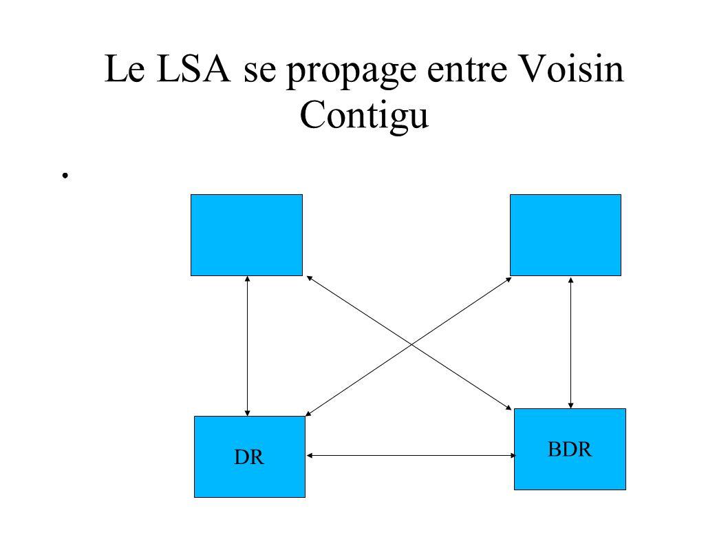 Le LSA se propage entre Voisin Contigu DR BDR