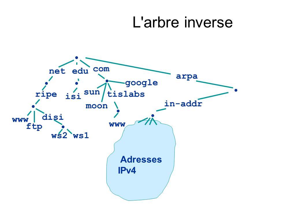 L'arbre inverse net com ripe www edu isi tislabs disi ws1ws2 ftp sun moon google arpa in-addr Adresses IPv4