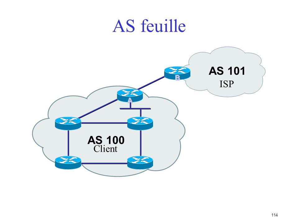 113 AS feuille (stub AS) Situation ne nécessitant pas de BGP Route par défaut chez le FAI Le FAI annonce vos réseaux dans on AS La politique de routag