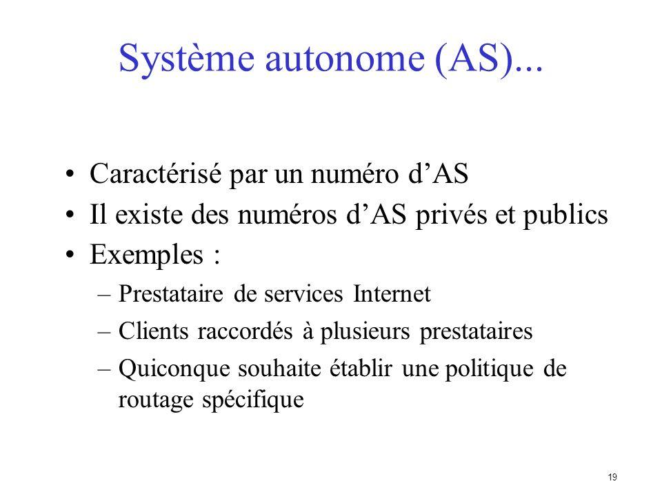 18 Système autonome (AS) Ensemble de réseaux partageant la même politique de routage Utilisation dun même protocole de routage Généralement sous une g
