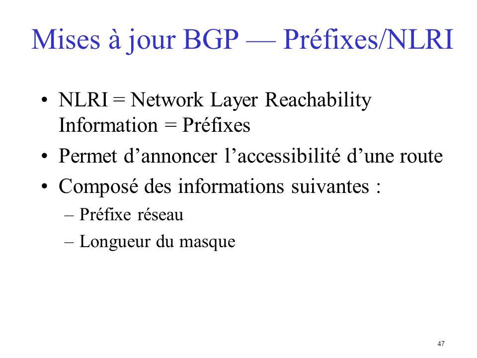 46 Longueur du champ routes inacessibles (2 Octets) Routes supprimées (Variable) Longueur des champs Attributs (2 Octets) Préfixe/Network Layer Reacha