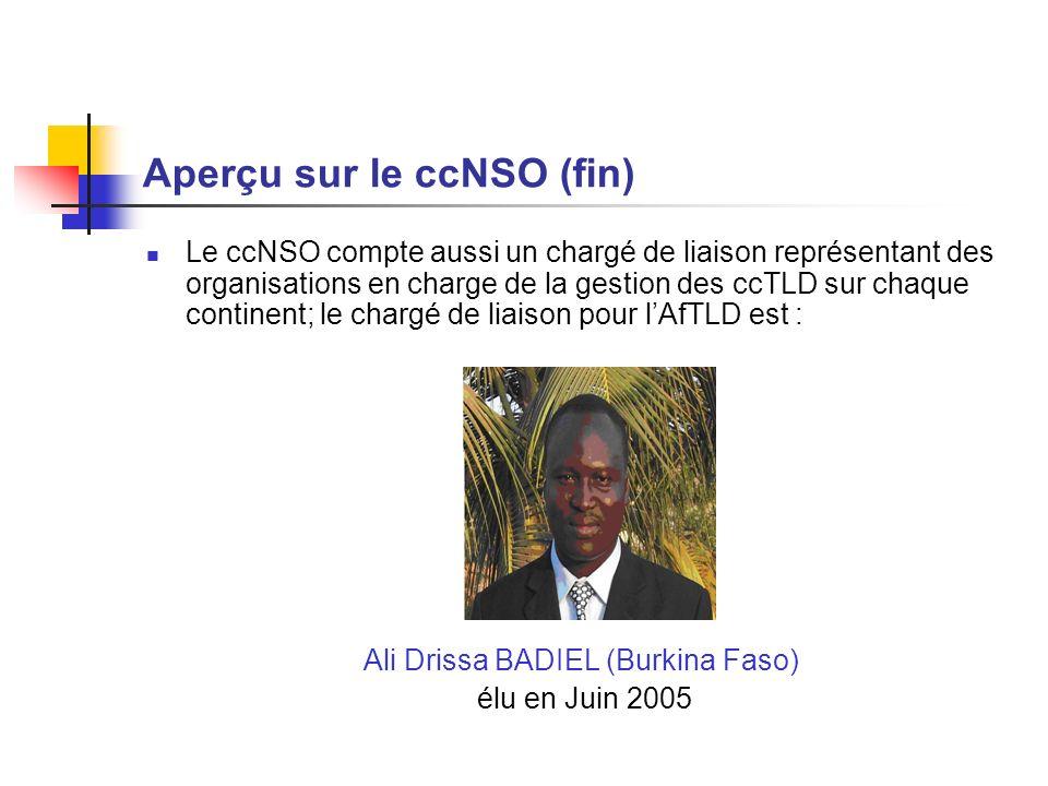 Aperçu sur le ccNSO (fin) Le ccNSO compte aussi un chargé de liaison représentant des organisations en charge de la gestion des ccTLD sur chaque continent; le chargé de liaison pour lAfTLD est : Ali Drissa BADIEL (Burkina Faso) élu en Juin 2005