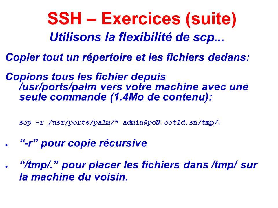Utilisons la flexibilité de scp... Copier tout un répertoire et les fichiers dedans: Copions tous les fichier depuis /usr/ports/palm vers votre machin