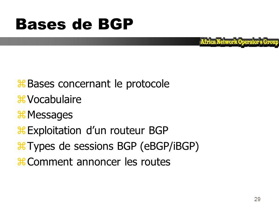 28 Agenda zRappels : bases du routage zBriques élémentaires zBases du protocole BGP zExercices zAttributs de routes BGP zPolitique de routage zArchite