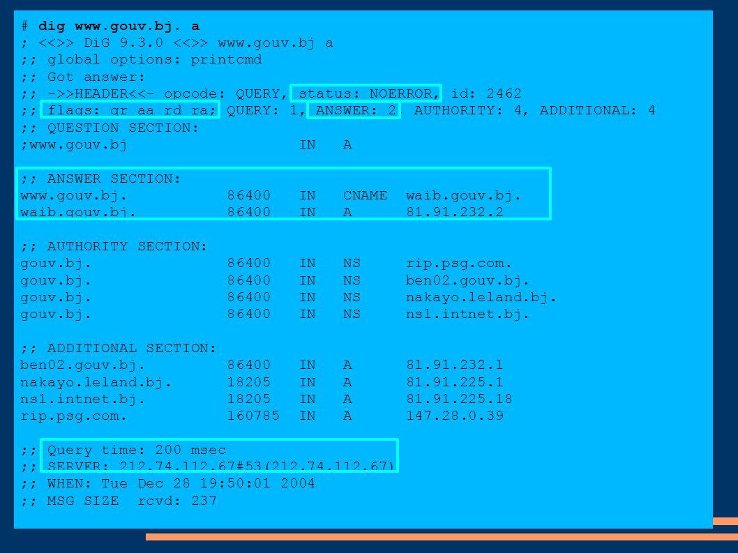 # dig www.gouv.bj. a ; > DiG 9.3.0 > www.gouv.bj a ;; global options: printcmd ;; Got answer: ;; ->>HEADER<<- opcode: QUERY, status: NOERROR, id: 2462
