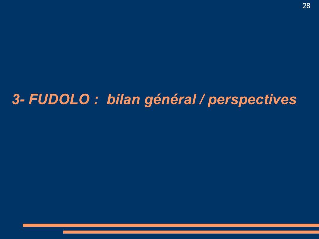 28 3- FUDOLO : bilan général / perspectives
