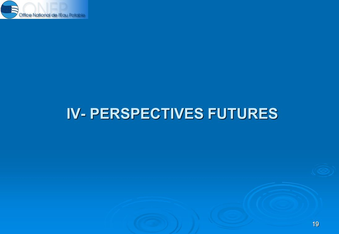 19 IV- PERSPECTIVES FUTURES