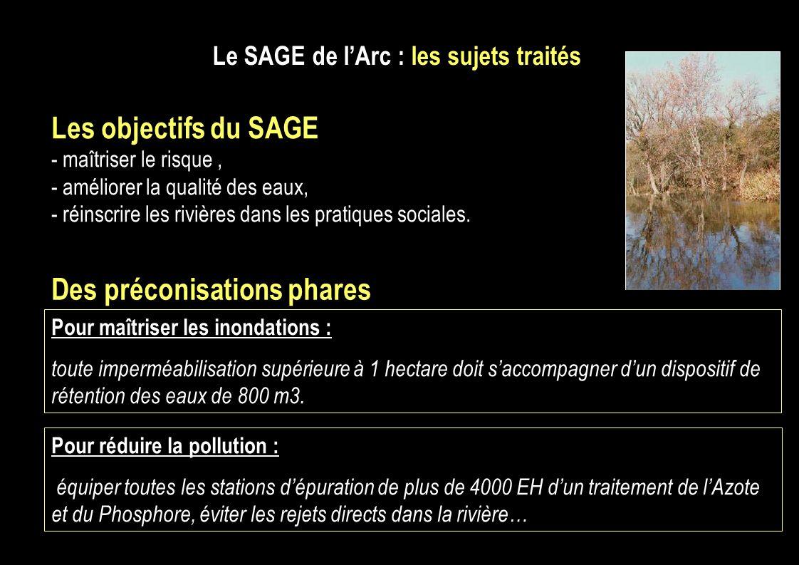 Le SAGE de lArc : les sujets traités Les objectifs du SAGE - maîtriser le risque, - améliorer la qualité des eaux, - réinscrire les rivières dans les pratiques sociales.