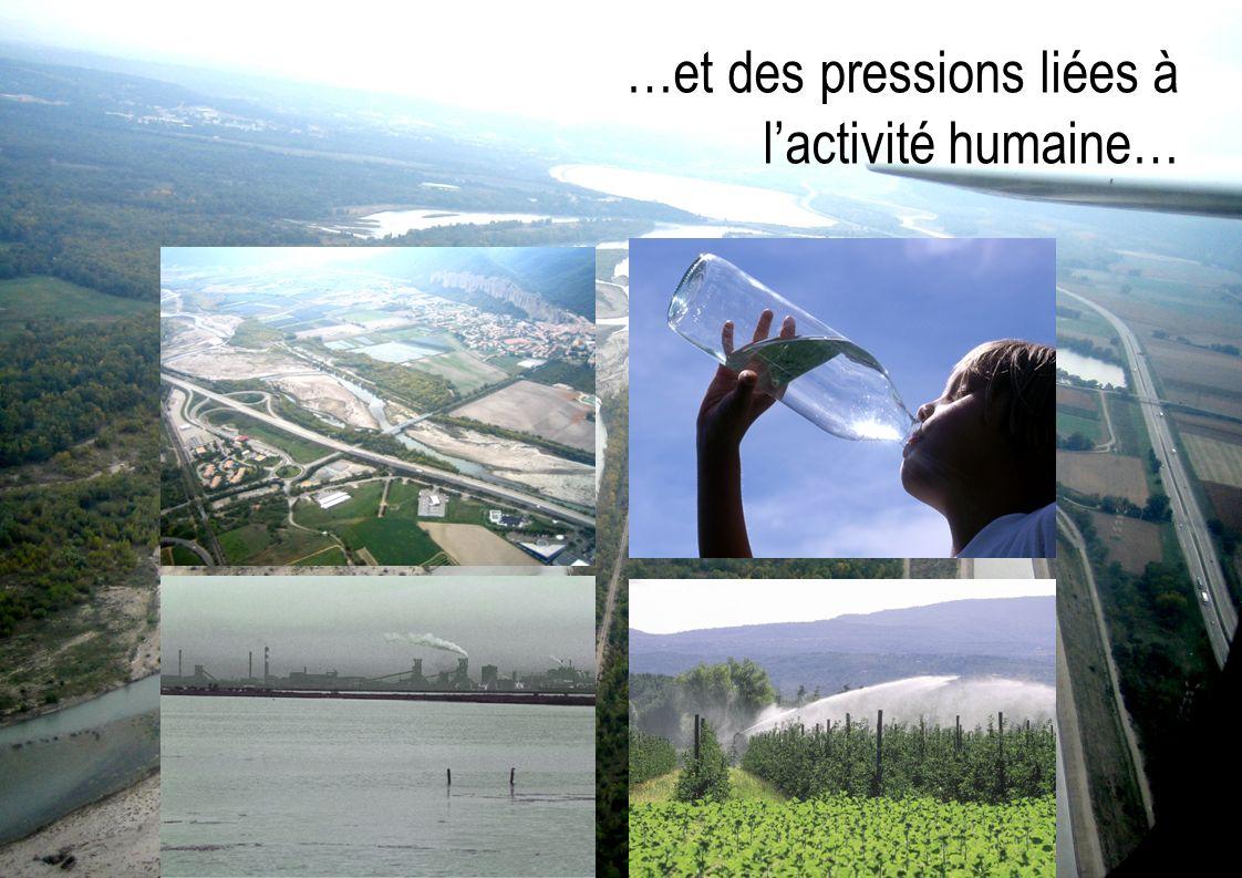 …et des pressions liées à lactivité humaine…