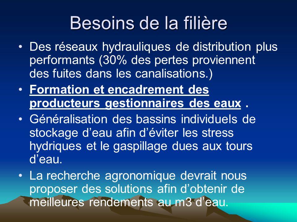 Besoins de la filière Des réseaux hydrauliques de distribution plus performants (30% des pertes proviennent des fuites dans les canalisations.) Formation et encadrement des producteurs gestionnaires des eaux.