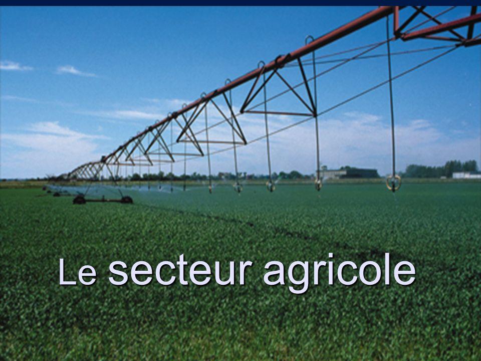 Le secteur agricole