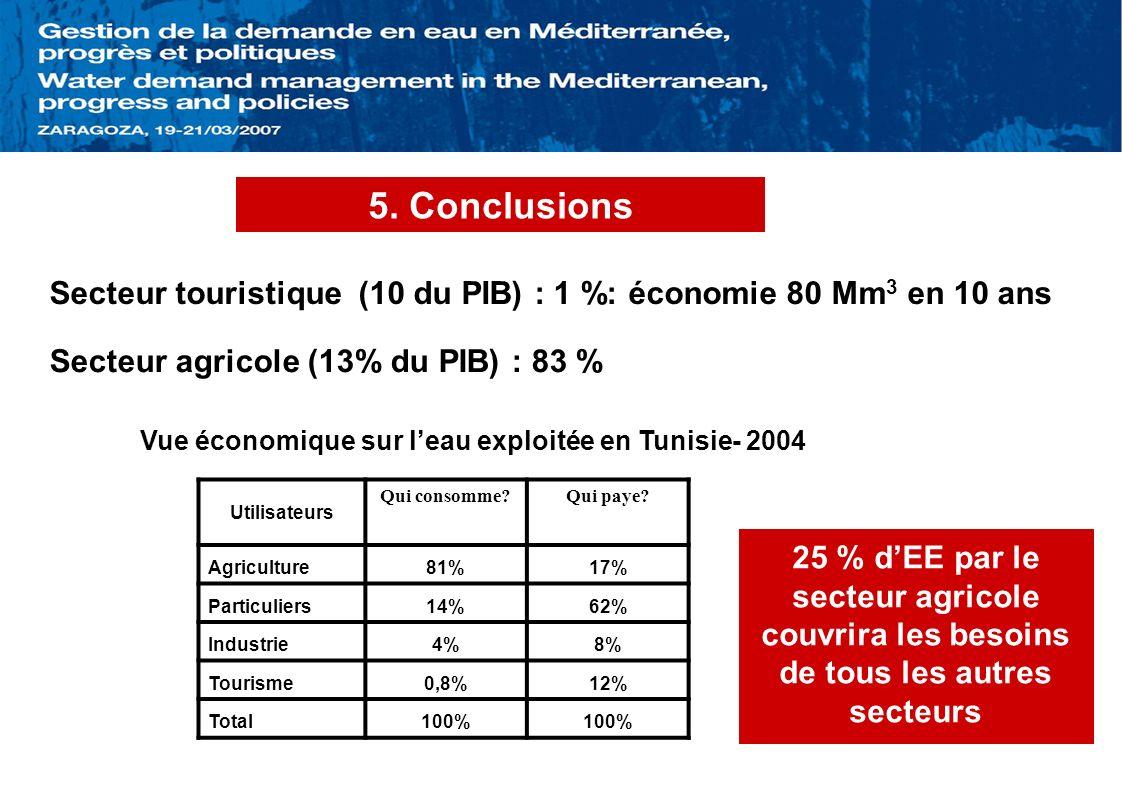 5. Conclusions Utilisateurs Qui consomme?Qui paye? Agriculture81%17% Particuliers14%62% Industrie4%8% Tourisme0,8%12% Total100% Secteur touristique (1