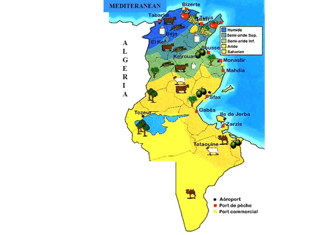 1-CONTEXTE 1.2- CONTEXTE TUNISIEN GESTION INTEGREE DE l EAU : * Mobilisation des Ressources Disponibles * Meilleure allocation de la Ressource *PRIVILEGIER LA GESTION DE LA DEMANDE
