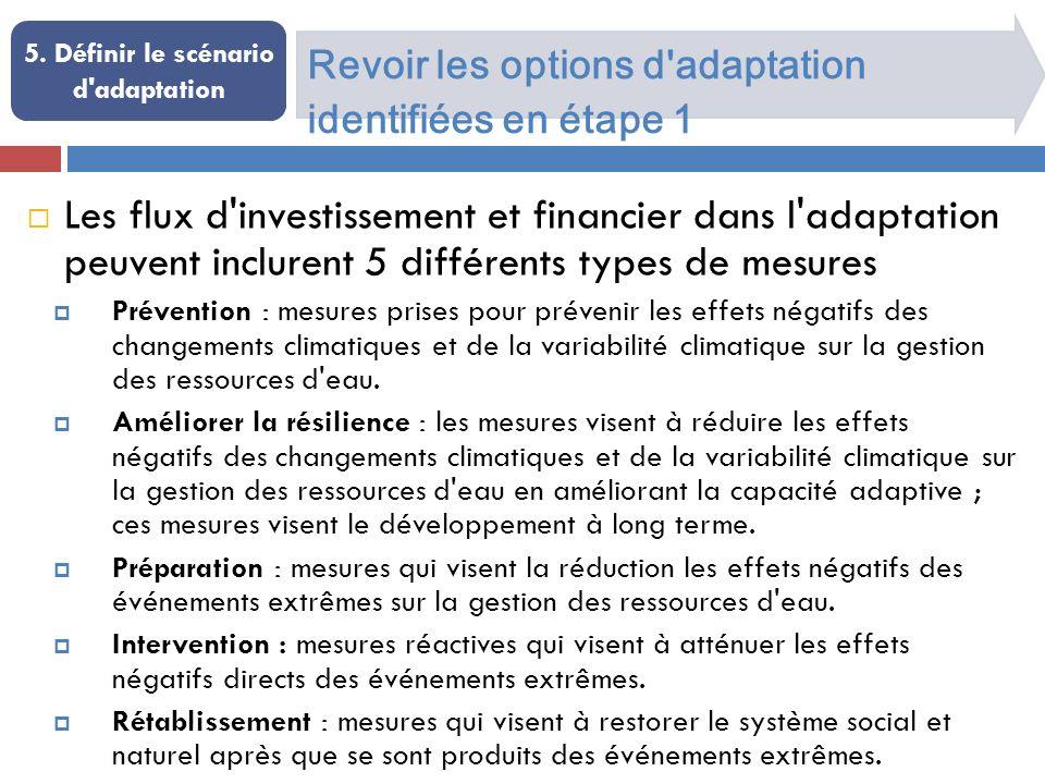 Revoir les options d'adaptation identifiées en étape 1 5. Définir le scénario d'adaptation Les flux d'investissement et financier dans l'adaptation pe