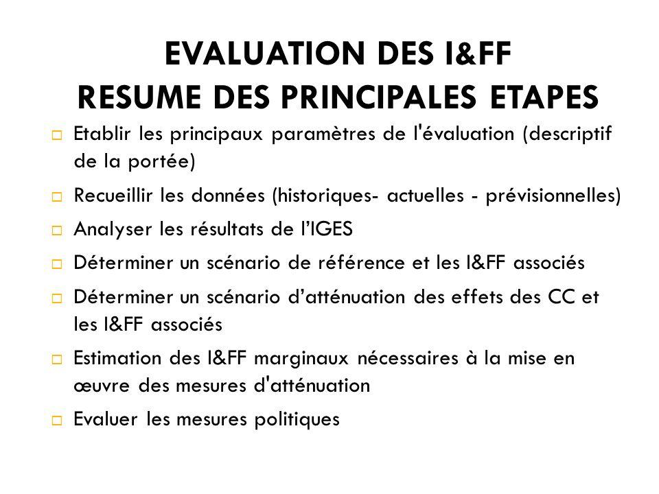 EVALUATION DES I&FF RESUME DES PRINCIPALES ETAPES Etablir les principaux paramètres de l évaluation (descriptif de la portée) Recueillir les données (historiques- actuelles - prévisionnelles) Analyser les résultats de lIGES Déterminer un scénario de référence et les I&FF associés Déterminer un scénario datténuation des effets des CC et les I&FF associés Estimation des I&FF marginaux nécessaires à la mise en œuvre des mesures d atténuation Evaluer les mesures politiques