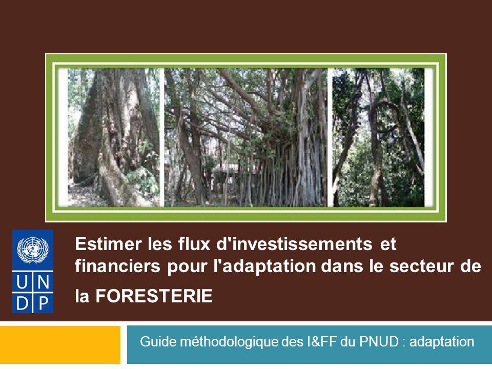 Estimer les flux d'investissements et financiers pour l'adaptation dans le secteur de la FORESTERIE Guide méthodologique des I&FF du PNUD : adaptation