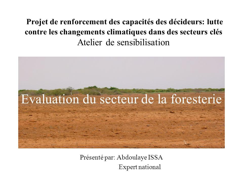 Projet de renforcement des capacités des décideurs: lutte contre les changements climatiques dans des secteurs clés Atelier de sensibilisation Présenté par: Abdoulaye ISSA Expert national Evaluation du secteur de la foresterie
