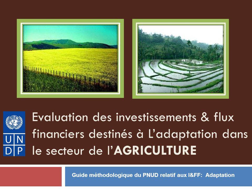 Evaluation des investissements & flux financiers destinés à Ladaptation dans le secteur de lAGRICULTURE Guide méthodologique du PNUD relatif aux I&FF: Adaptation