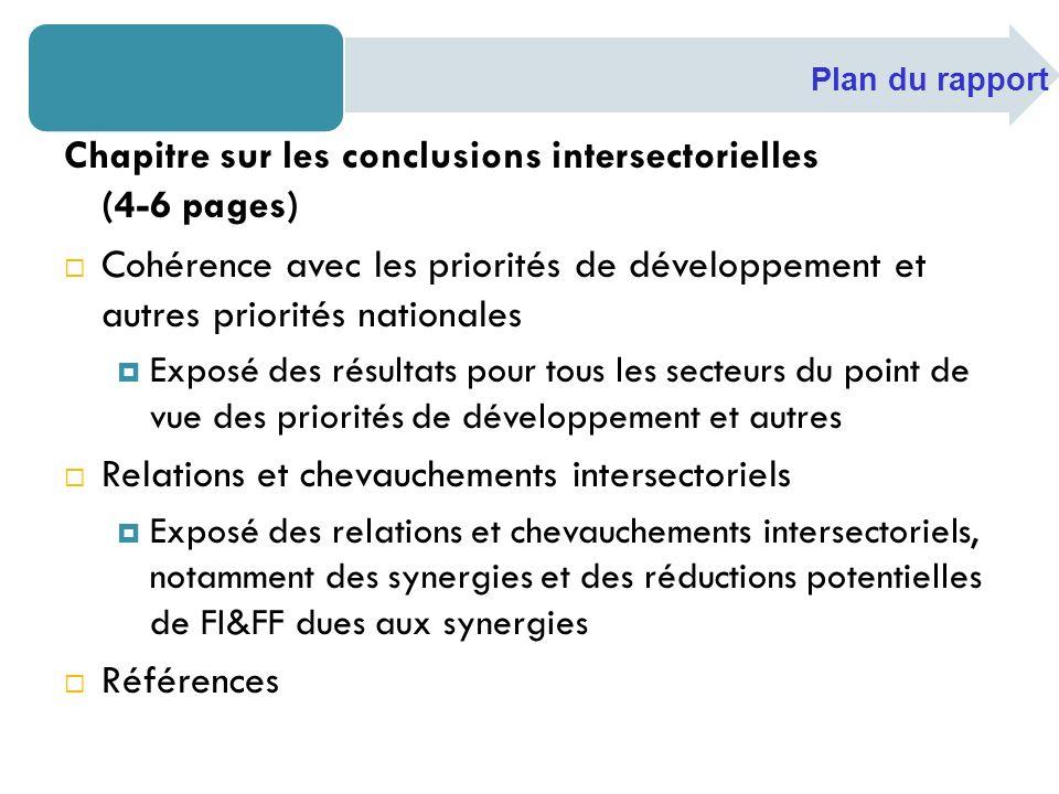 Chapitre sur les conclusions intersectorielles (4-6 pages) Cohérence avec les priorités de développement et autres priorités nationales Exposé des rés