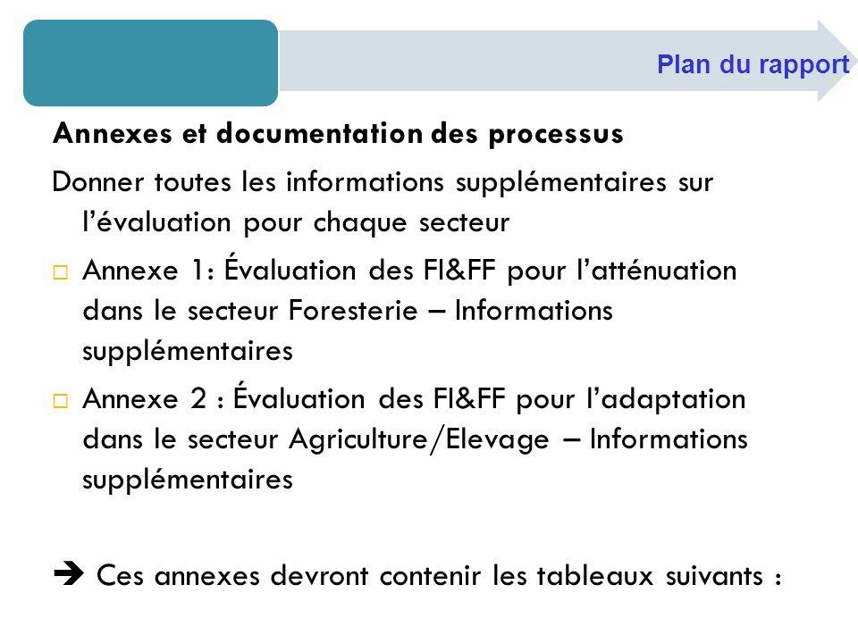 Annexes et documentation des processus Donner toutes les informations supplémentaires sur lévaluation pour chaque secteur Annexe 1: Évaluation des FI&