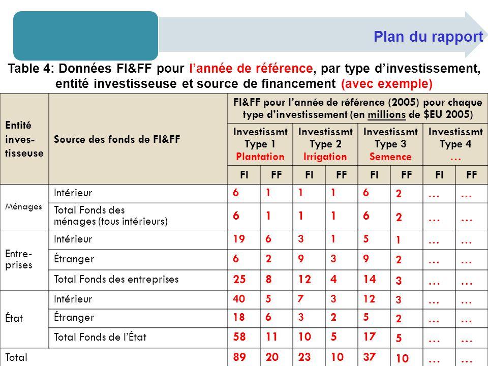 Plan du rapport Entité inves- tisseuse Source des fonds de FI&FF FI&FF pour lannée de référence (2005) pour chaque type dinvestissement (en millions d