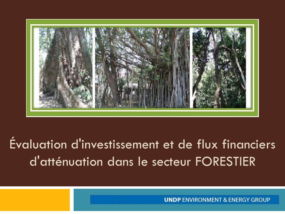 Évaluation d investissement et de flux financiers d atténuation dans le secteur FORESTIER