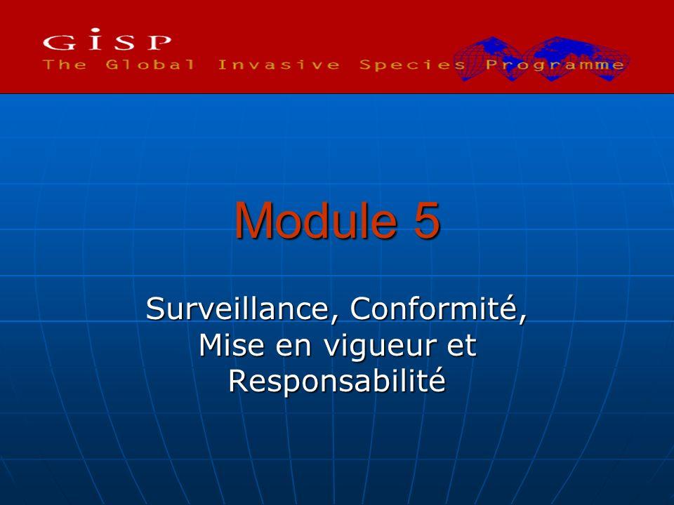 Module 5 Surveillance, Conformité, Mise en vigueur et Responsabilité