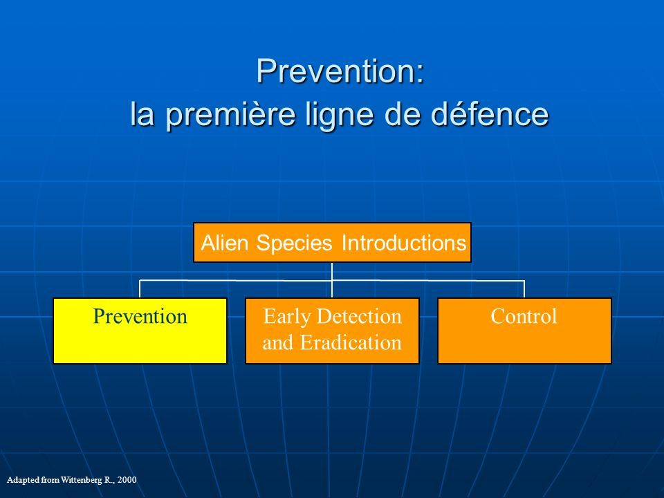 Prevention: la première ligne de défence PreventionEarly Detection and Eradication Control Alien Species Introductions Adapted from Wittenberg R., 200