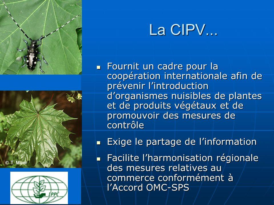 La CIPV... Fournit un cadre pour la coopération internationale afin de prévenir lintroduction dorganismes nuisibles de plantes et de produits végétaux