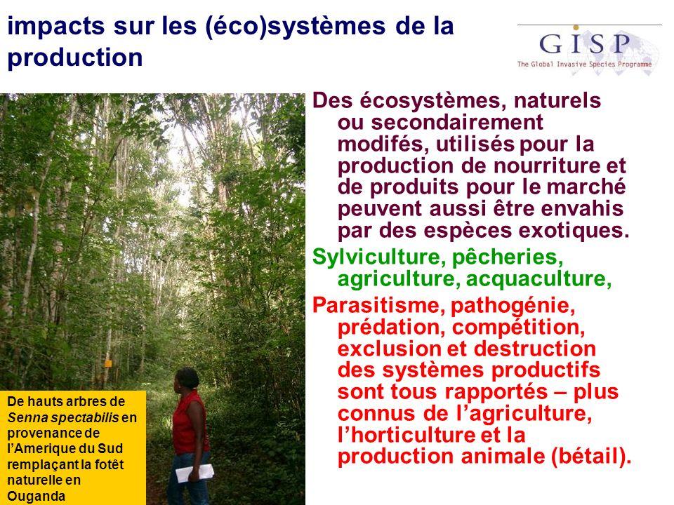 impacts sur les (éco)systèmes de la production Des écosystèmes, naturels ou secondairement modifés, utilisés pour la production de nourriture et de pr