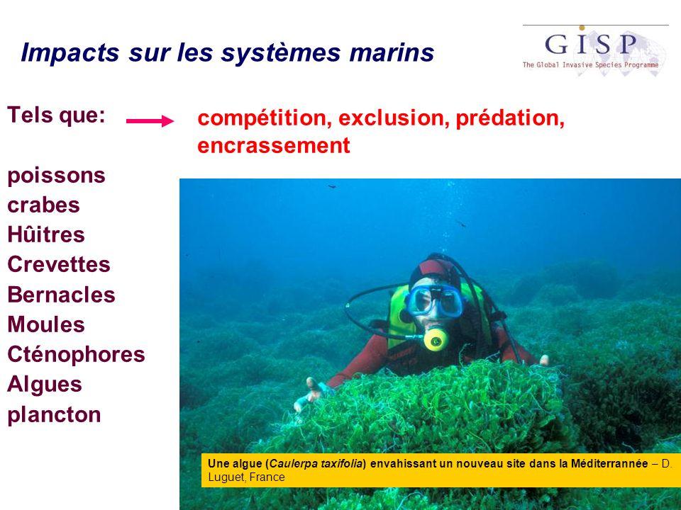 Impacts sur les systèmes marins Tels que: poissons crabes Hûitres Crevettes Bernacles Moules Cténophores Algues plancton compétition, exclusion, préda