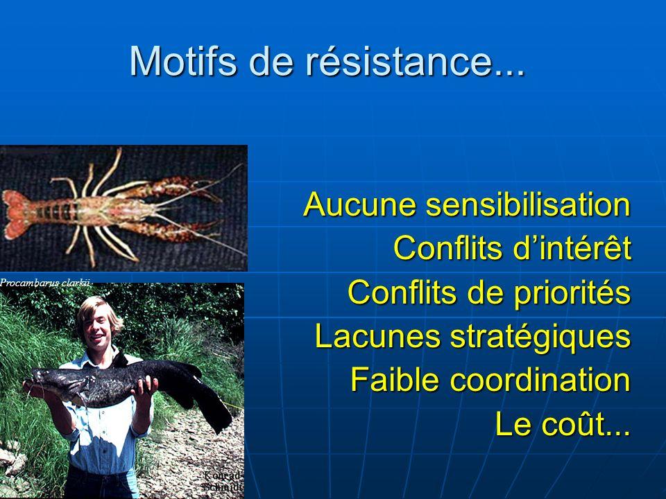 Motifs de résistance... Aucune sensibilisation Conflits dintérêt Conflits de priorités Lacunes stratégiques Faible coordination Le coût... Procambarus