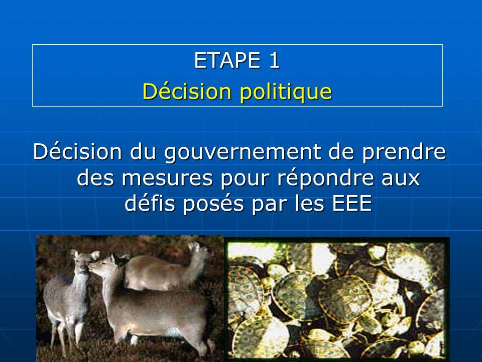 Décision du gouvernement de prendre des mesures pour répondre aux défis posés par les EEE ETAPE 1 Décision politique