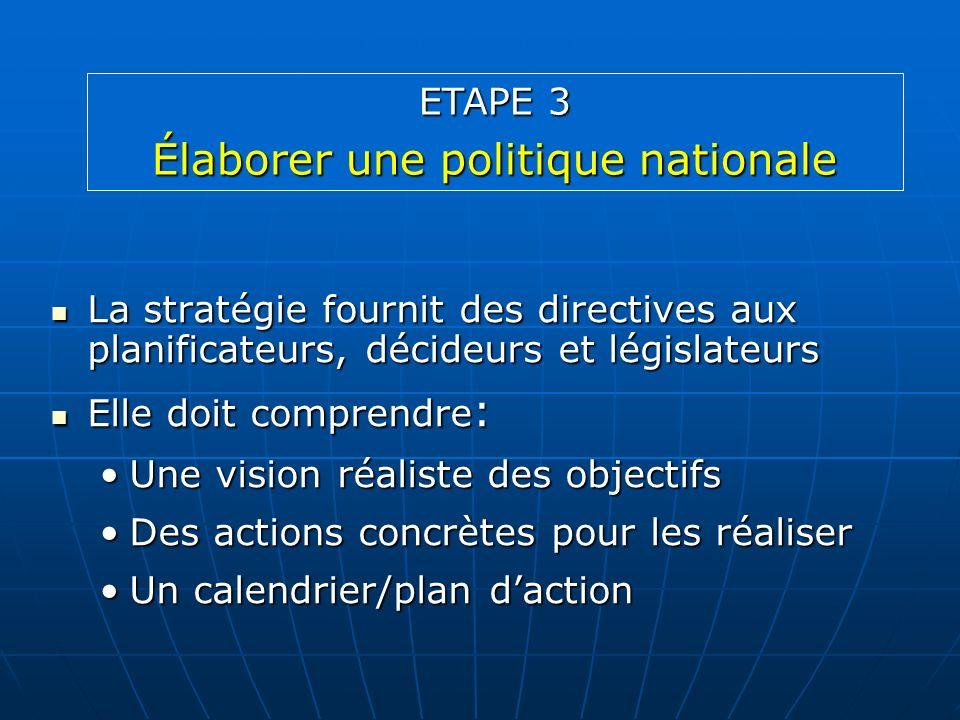 La stratégie fournit des directives aux planificateurs, décideurs et législateurs La stratégie fournit des directives aux planificateurs, décideurs et