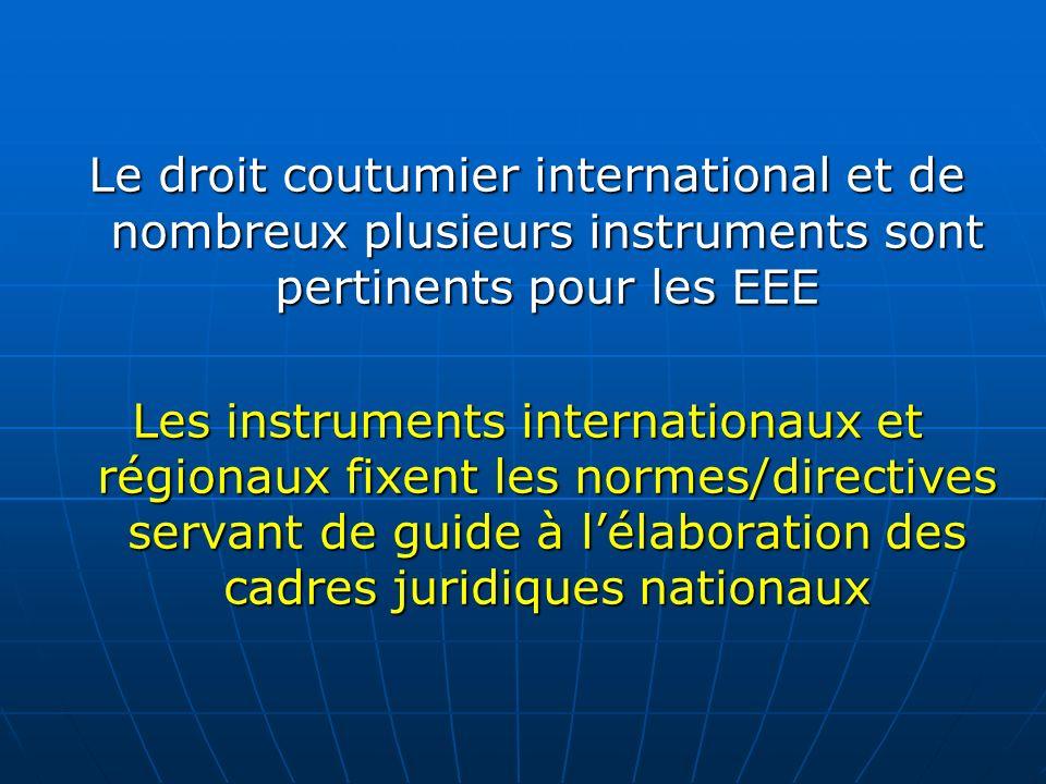 Le droit coutumier international et de nombreux plusieurs instruments sont pertinents pour les EEE Les instruments internationaux et régionaux fixent