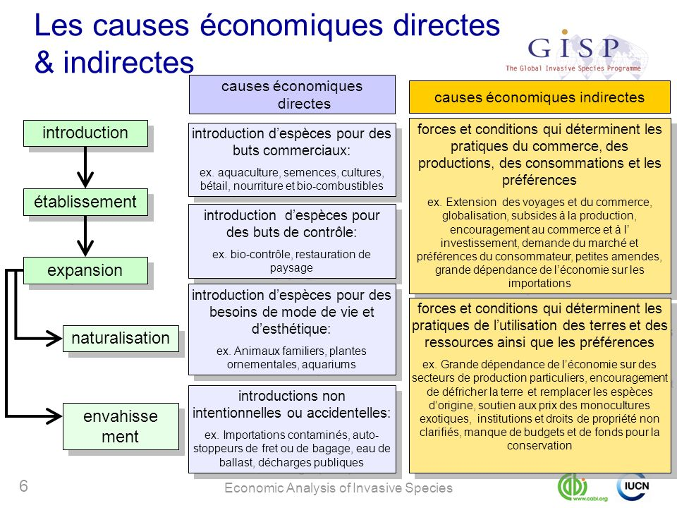 Economic Analysis of Invasive Species 6 introduction établissement expansion naturalisation envahisse ment Les causes économiques directes & indirecte