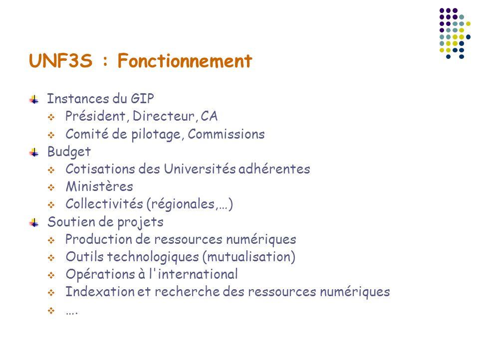 UNF3S : Fonctionnement Instances du GIP Président, Directeur, CA Comité de pilotage, Commissions Budget Cotisations des Universités adhérentes Ministè