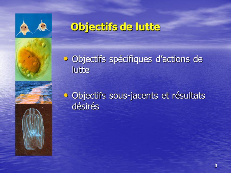3 Objectifs de lutte Objectifs spécifiques dactions de lutte Objectifs spécifiques dactions de lutte Objectifs sous-jacents et résultats désirés Objectifs sous-jacents et résultats désirés